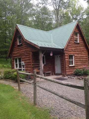 Cozy Ricketts Glen Cabin