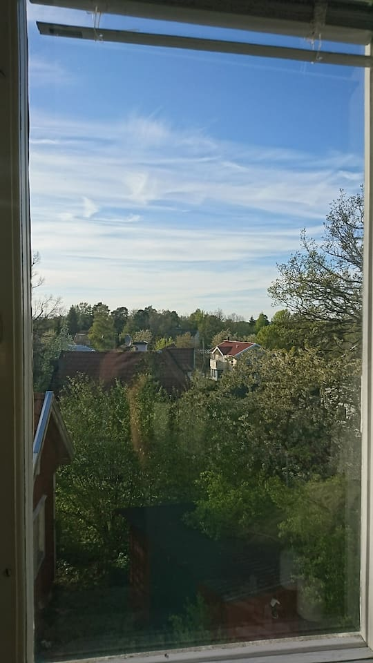 View from the bedroom