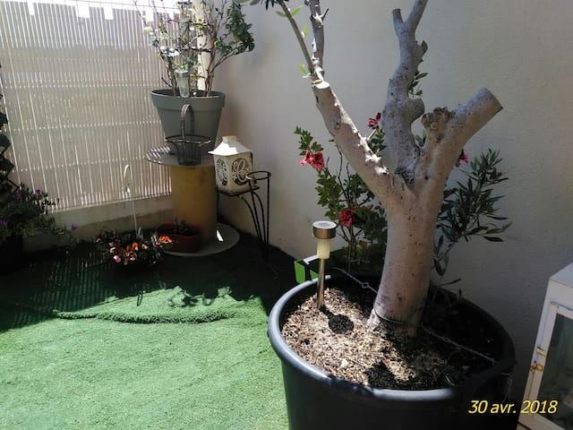 Terrasse avec jardinet pelouse synthétique