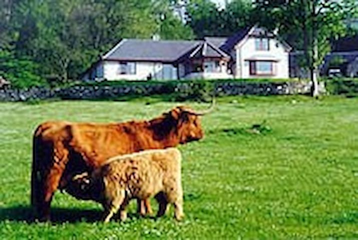 Drumbuie Farm Bed and Breakfast - Drumnadrochit - Bed & Breakfast