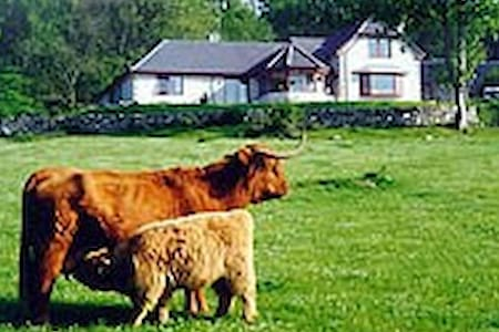 Drumbuie Farm Bed and Breakfast - Drumnadrochit