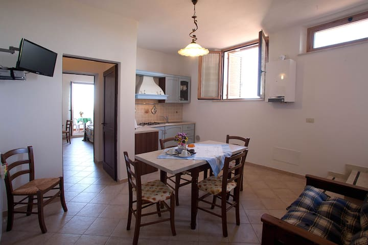 """""""Il Gelsomino"""" apartment with pool."""