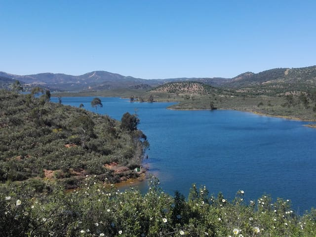 Camp Wild - El Madroño - Tent