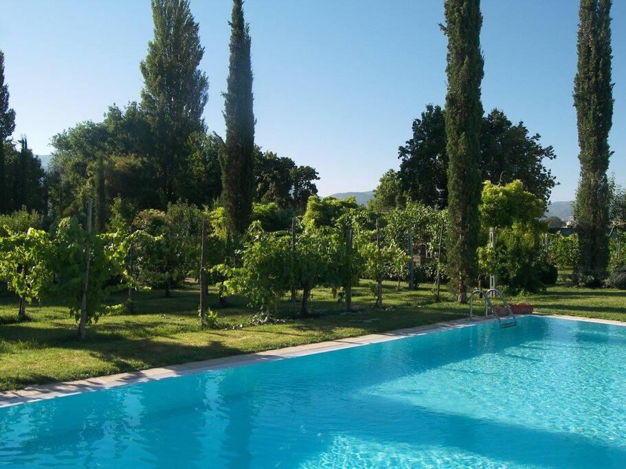 piscina a sfioro solo in estate e meraviglioso giardino all'italiana