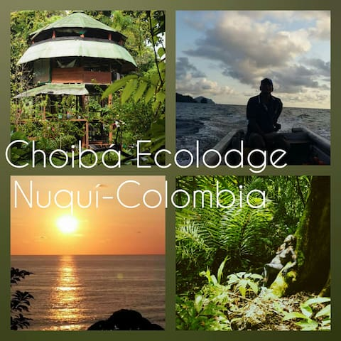Choibá  Paradise in Nuquí/Colombia - Arusi