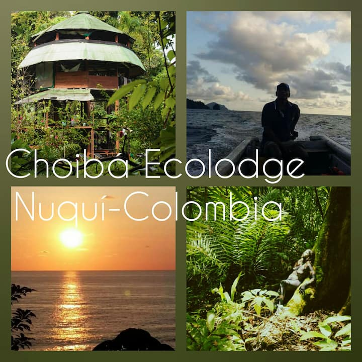 Choibá Ecolodge  Paradise in Nuquí/Colombia