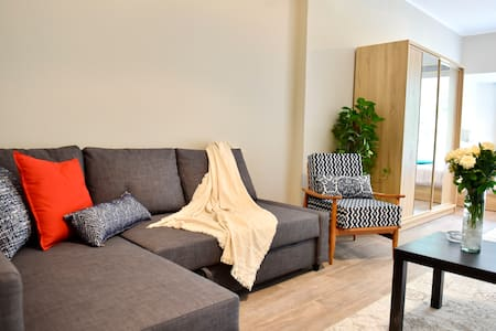 **ZAMALEK RENOVATED Luxurious STUDIO APARTMENT8-**