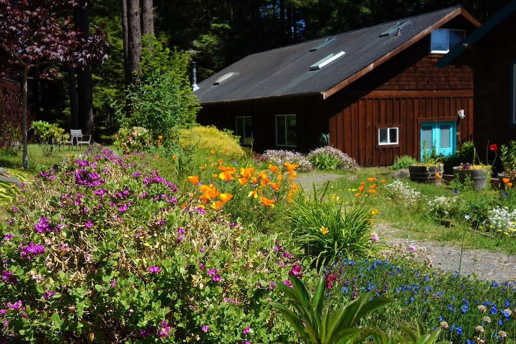 """The space is situated in the  lower floor of  the """"barn"""",  private blue door entry."""