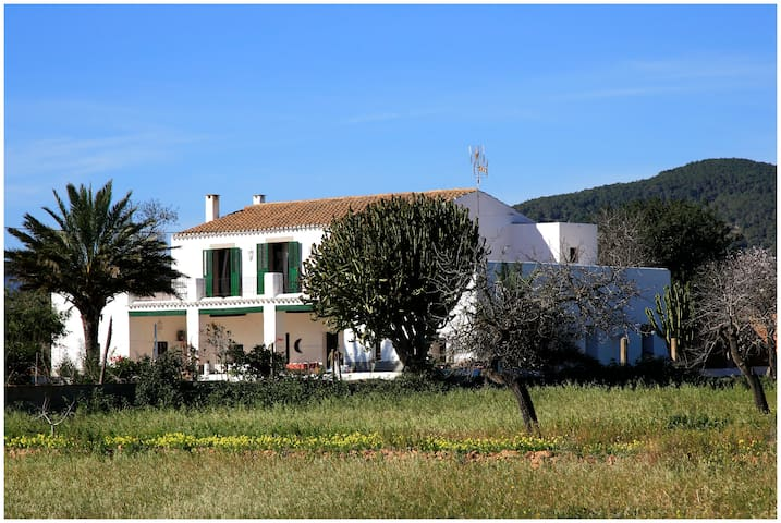 SPECIAL OFFER Cas Catala charming country home