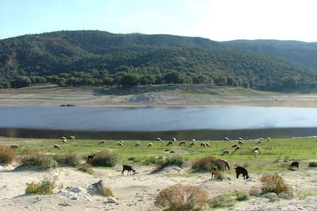 Gîte au bord du lac Afrougaa (26Km Sefrou)