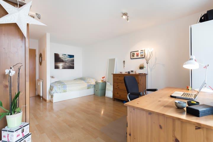 Nette& komfortable 1-Zimmer-Wohnung - Freiburg im Breisgau - Departamento