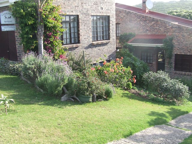 A friendly cottage near all beaches - Kenton-on-Sea - Apartment