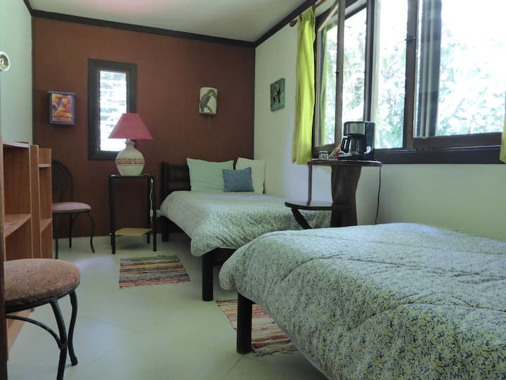 Lucky Bug Bed and Breakfast - Flower Room - Standard Twin Room Rain forest View