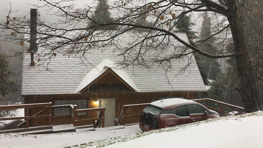 Snowing November 26 2016