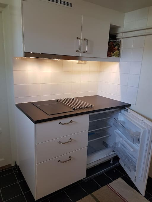 Fridge with small feezing compartment