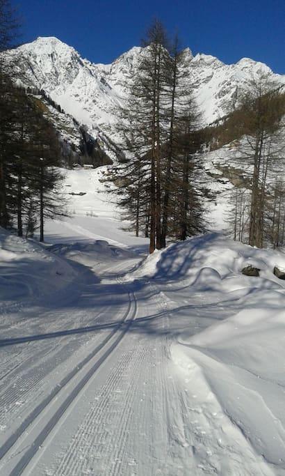 Alloggio indipendente tra le alpi valdostane for Alloggio ad ovest delle cabine