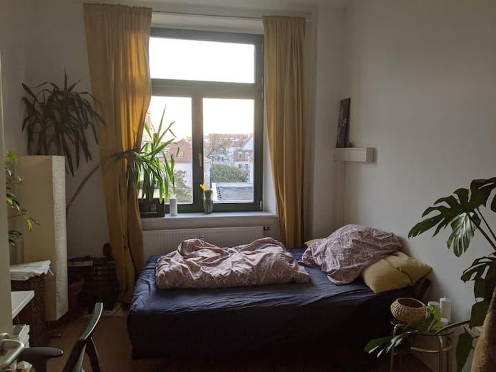 Ruhiges Zimmer in perfekter Lage mit Dachterasse 2