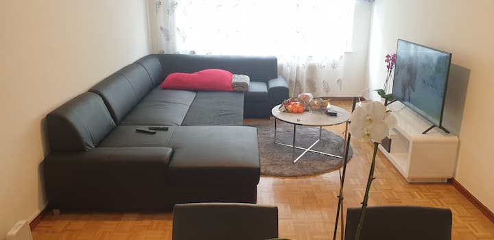 Nice apartment in Center Geneva