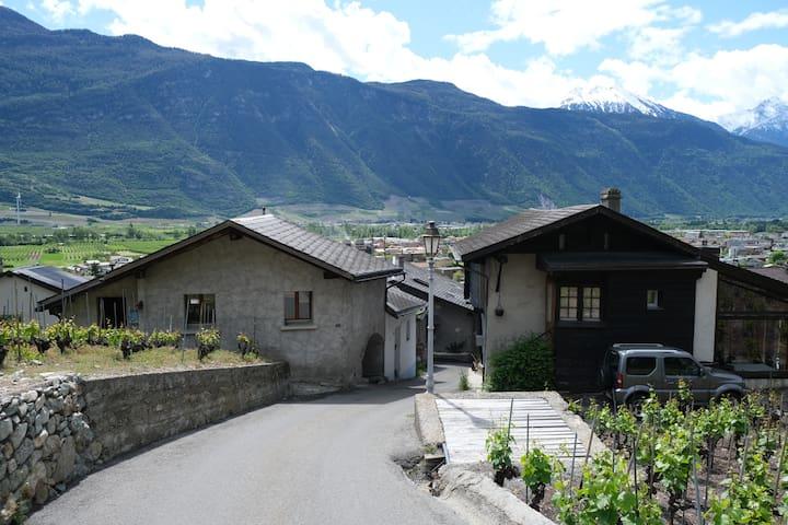 Ancienne maison typique au milieu des vignes