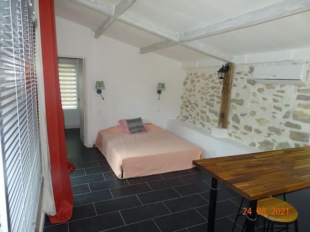 pièce principale avec lit queen size et climatisation reversible