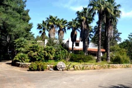 Salento Maruggio villa near the sea - maruggio