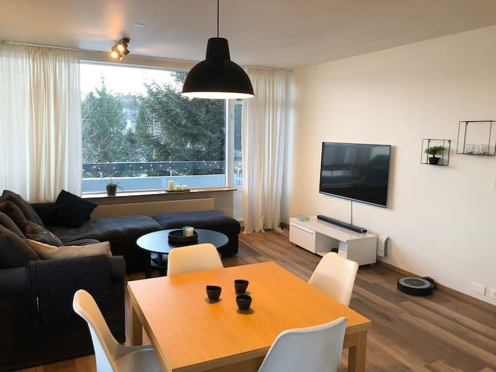 A nice apartment in the heart of Reykjavík