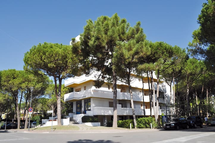 apt for 4+2 persons with a/c in Bibione R25441