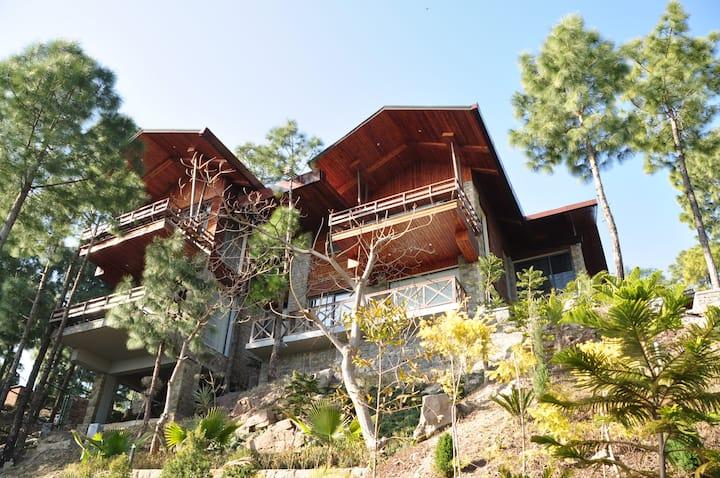 The Hermitage: Emerald Villa