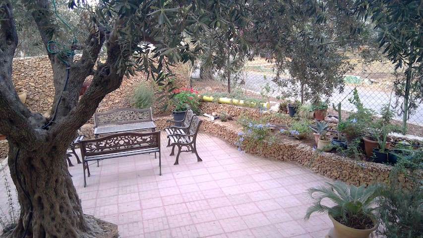 E. Jerusalem Home w Beautiful Garden - Room 1