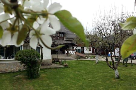 Charming Sf Nicolae 3***- agroturism pension - Aluniș - Villa