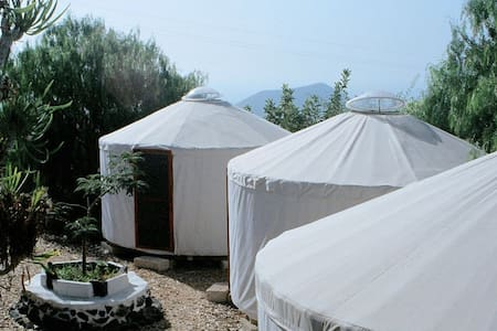 Yurta en la naturaleza-2  (Desayuno incluido)