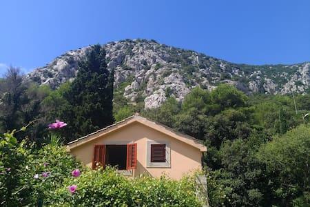 Lobagola Mediterra - Trstenik - Haus