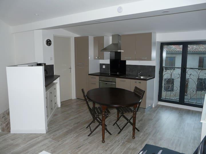 Agréable studio de 30 m2 entièrement rénové
