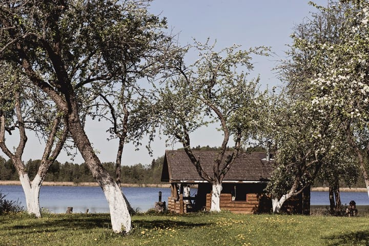 Cozy cabin by the lake in ecological farm Kemešys