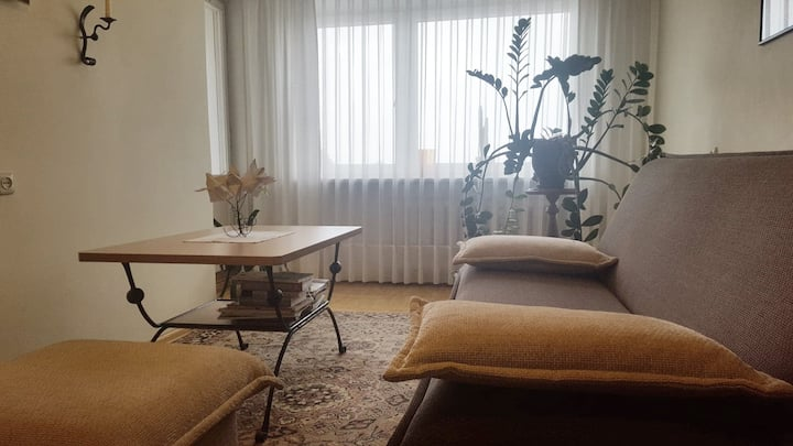 Two-room apartment in Taurage