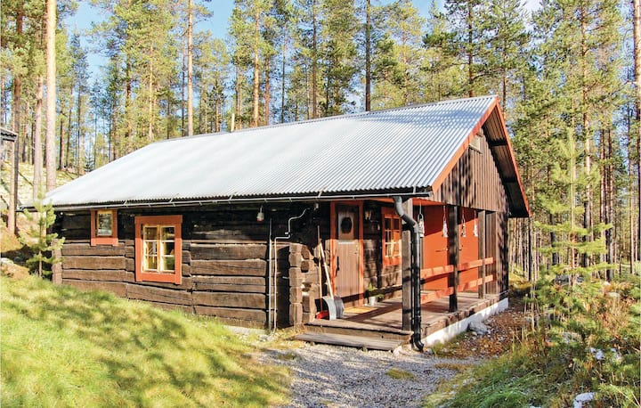 Beautiful home in Idre with Sauna and 1 Bedrooms