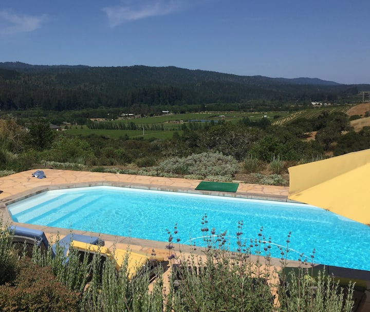 Hilltop Philo Property Surrounded by Vineyards