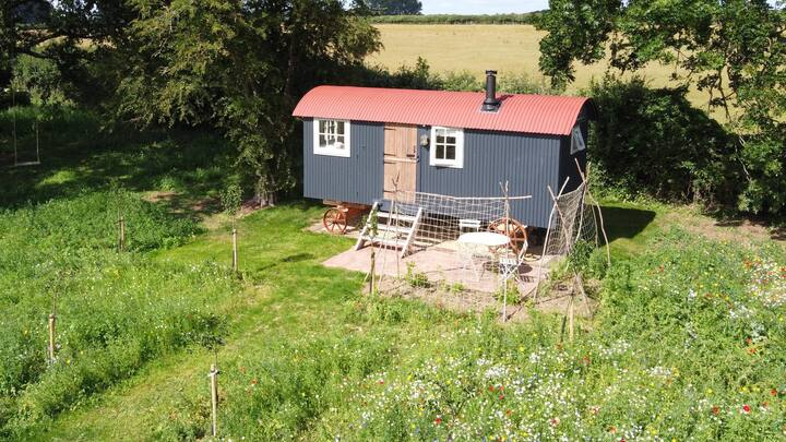 Old Tinny - brand new shepherd hut available now.