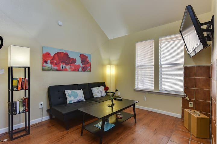 S.Austin Condo 2bd 1ba,Pool,Laundry,patio, near DT