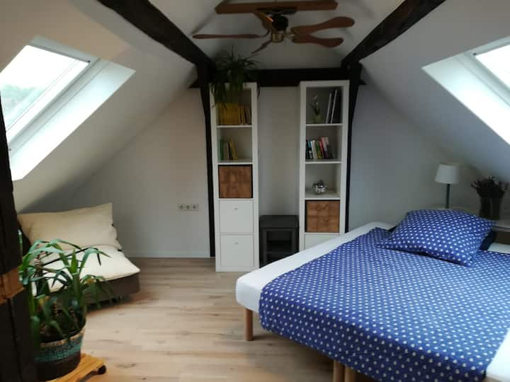 nice, under the roof with bathroom!