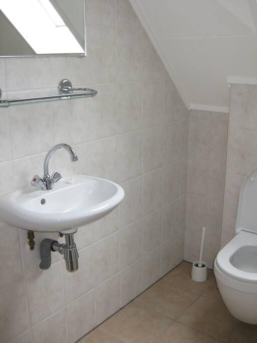 Separate bathroom: Toilet & basin