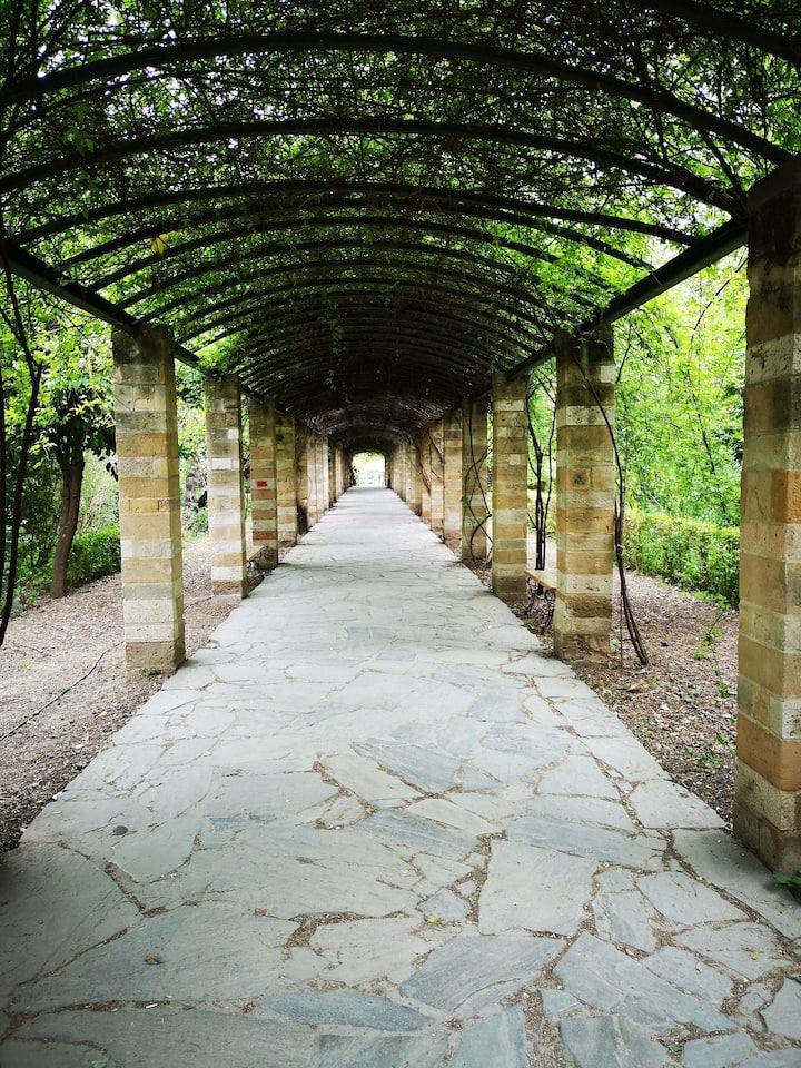 National Gardens pathway