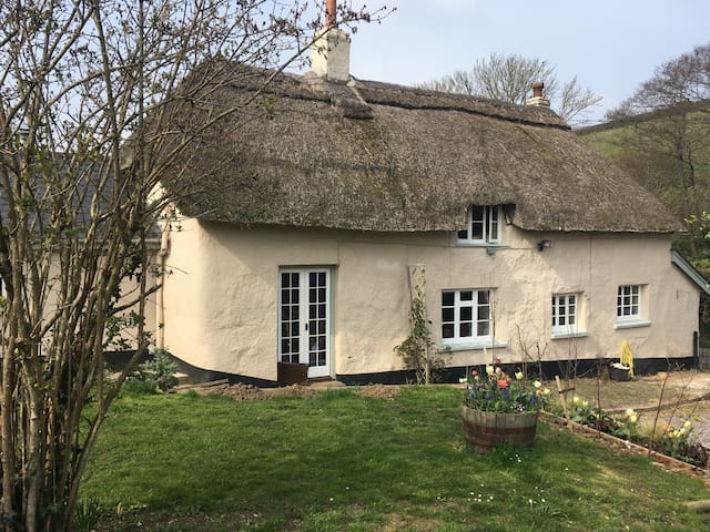 The Thatched House, Dartmoor - Totally Gorgeous! - Devon - House
