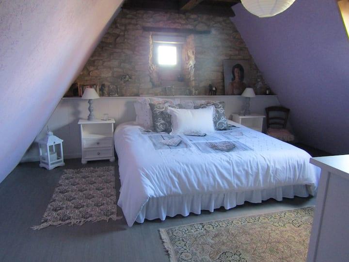 La Mansardée : chambre + gd salon (canapé-lit)