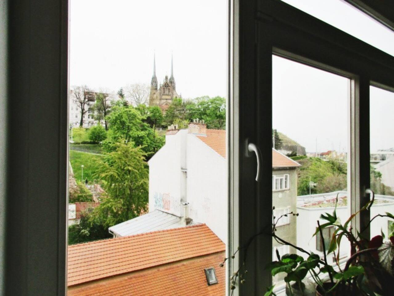 Výhled z pokoje pro hosty