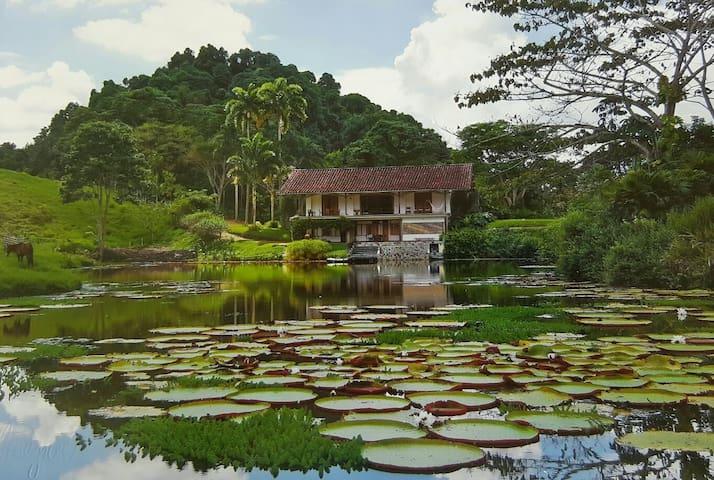 La Casa De Las Victorias Amazónicas - CERRITOS - Casa