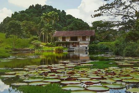 La Casa De Las Victorias Amazónicas - CERRITOS - 獨棟