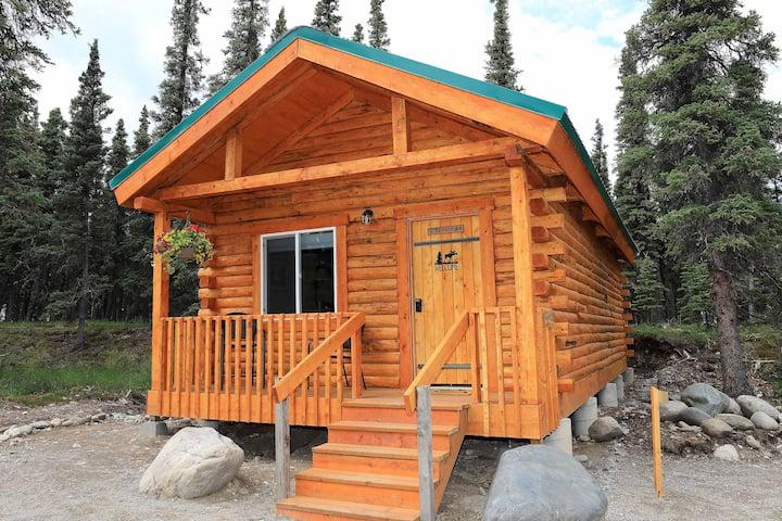 Cozy Aurora Cabin