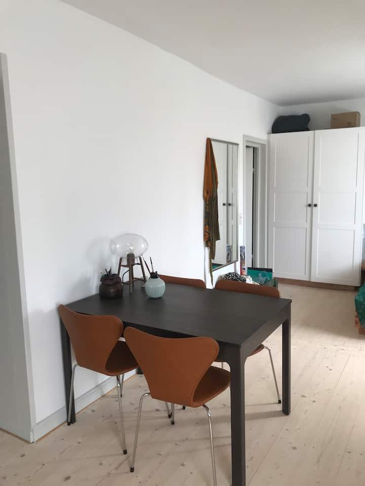 Apartment in Center of Copenhagen