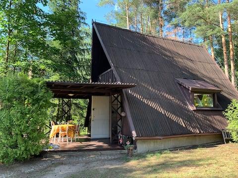 Kaminsko, Foresta di Zielonka, casa sul lago.